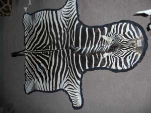 Zebra With Felting